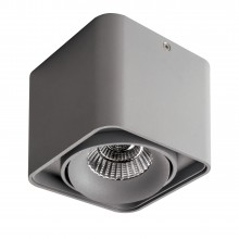 Светильник Lightstar 212519 Monocco Серый