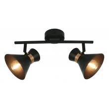 Светильник спот Arte Lamp A1406AP-2BK Baltimore
