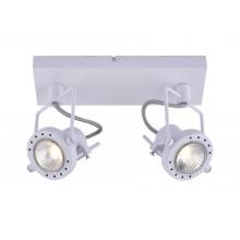 Светильник спот Arte Lamp A4300AP-2WH белый