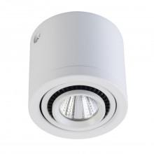 Накладной точечный светильник Regenbogen Life 637017101 Круз 5 Вт 3000К Белый