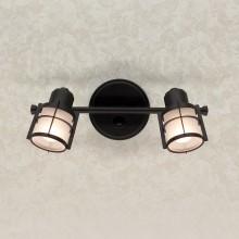 Светильник спот Citilux CL563521 Реймс