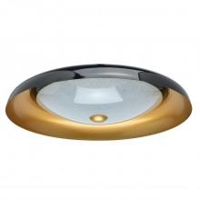 Потолочный светодиодный светильник Chiaro 674016501 Ривз 30W LED 220 V чёрный
