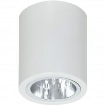 Накладной точечный светильник Luminex DOWNLIGHT ROUND 7234 белый
